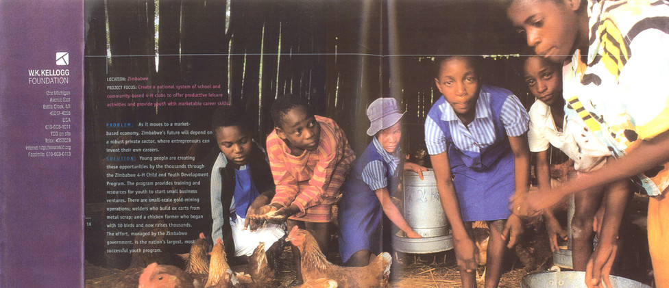 Kellogg Foundation brochure