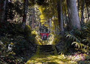 Mizusawa's Kumano shrine