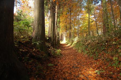 Haguro in autumn