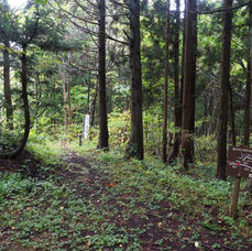9. Follow the path to Juotoge