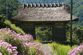 Dainichibo Temple entrance