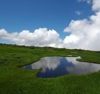 Midagahara marshes