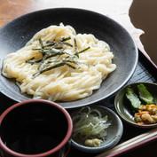 Mugikiri Udon Noodles