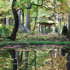 20. If you followed the path to Minamidani, you arrive to the lake