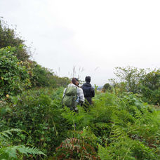 2. Follow the trail in the ricefields