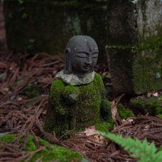 14. Ancient Buddhist statues