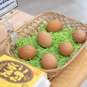 Wanpaku Egg