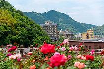 Atsumi's Rose Garden
