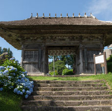 11. You can enter Dainichibo temple through this gate or enter through the parking lot