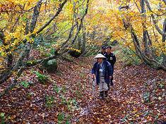Rokujurigoe-kaido Path
