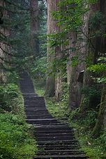 Mt. Haguro's Stone Stairway