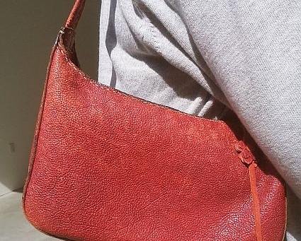 シュラスコの革で作ったバッグを使って10年