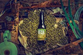 Vega Brewery / Gothenburg
