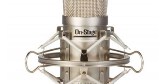 On Stage Condenser Microphone