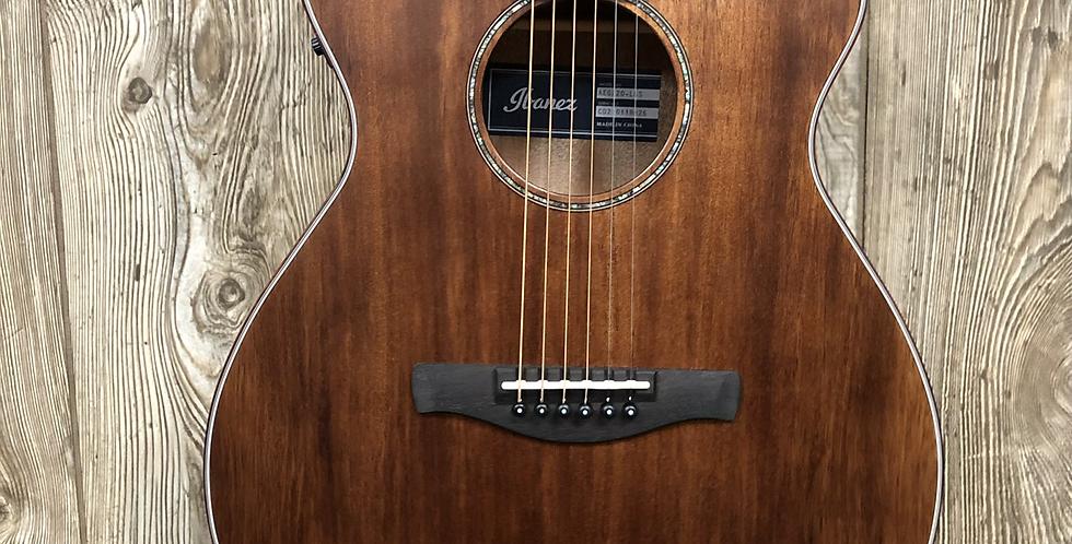 Ibanez AEG220LGS Acoustic/Electric