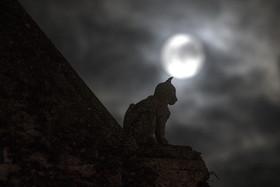 La super lune à Angoulême