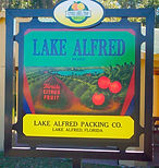Lake Alfred Packing Co.JPG