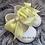 Thumbnail: White & Lemon Soft Sole Baypods