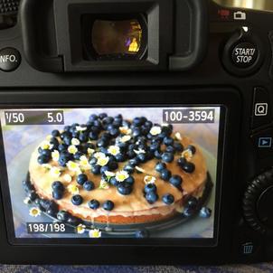 Zitronen-Blaubeer-Kuchen