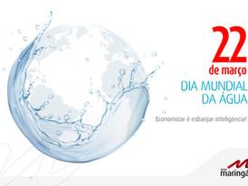 Grupo Maringá celebra o Dia Mundial da Água