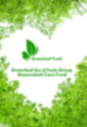 Зеленый фонд.jpg