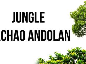 JUNGLE BACCHAO ANDOLAN