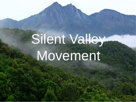 WHAT IS SAVE SILENT VALLEY MOVEMENT?