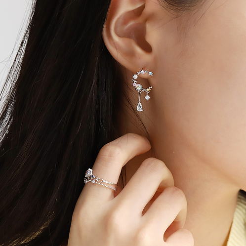 Cubic Zirconia Crescent Moon and Crystal Drop Small Earrings