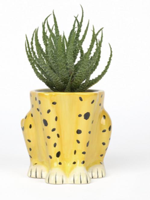 Urban Jungle Plant Pot Cheetah DOIY
