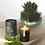 Thumbnail: Aery Living : Botanical Green 200g Soy Candle