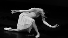 Through the Lens of Ani Collier: D is for Dance Alive