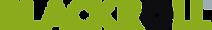 BLACKROLL_Logo_4C (1) 800px wide.png
