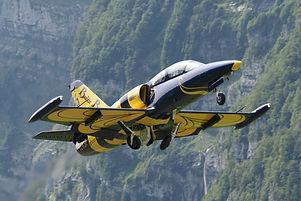 L-39 Baltic Bees (13).JPG