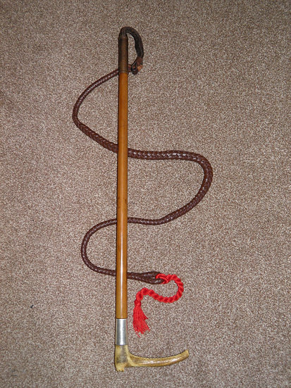 Early Edwardian Hallmarked 1901 Silver Gents Cane Hunt Whip & Leather Lash 'F.F'