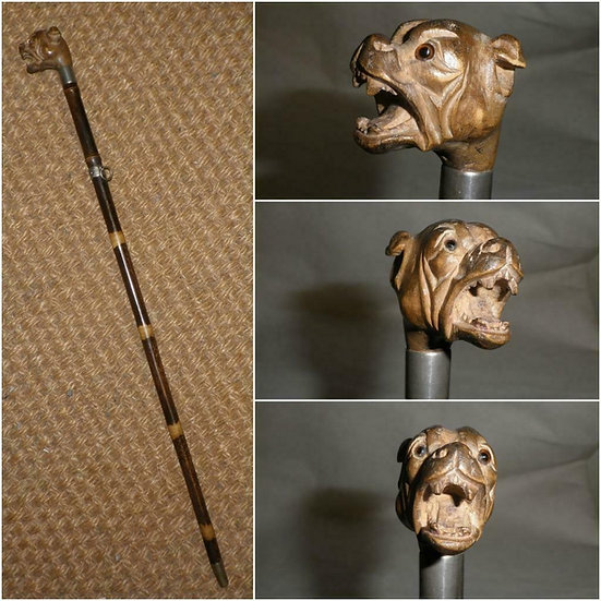 Antique Snarling Dog's Head (With Glass Eyes) Top Swagger Stick - 51cm