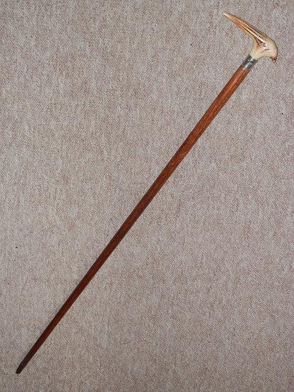 Antique Walking Stick - Pointed Antler Handle W/ Nickel Silver Collar - 86.5cm