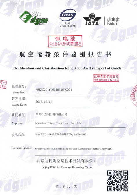 Report for Air Transport of Goods.jpg