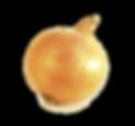 yellow-onion-shallot-vegetarian-cuisine-
