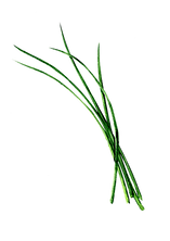 Chives Transparent Hi Res.png
