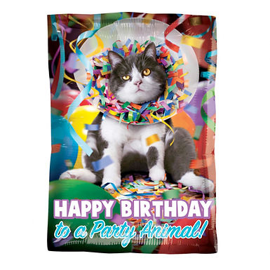 Happy Birthday to a Party Animal Foil Balloon