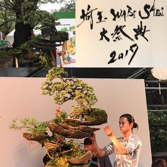 埼玉WABI SABI 大祭典 2017 盆栽