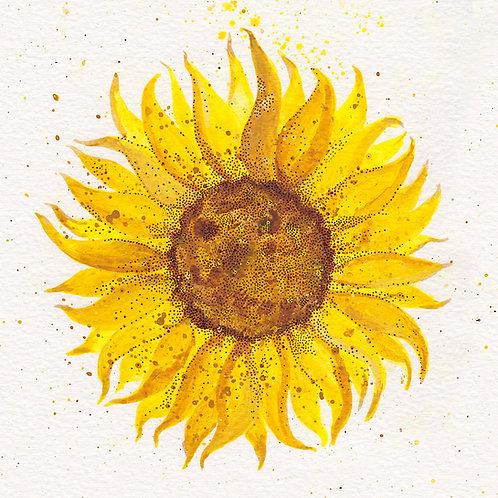 """Sunflower 4"" Postcard *PRE-ORDER*"