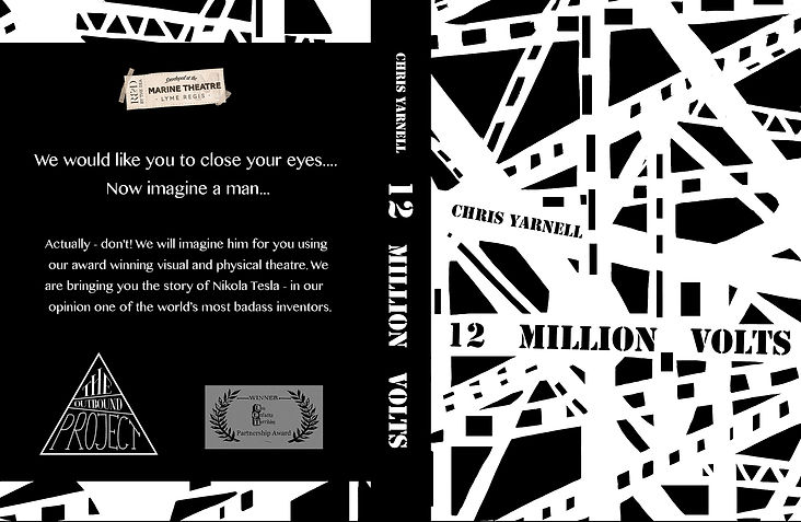 12 Million Volts book jacket 2.jpg