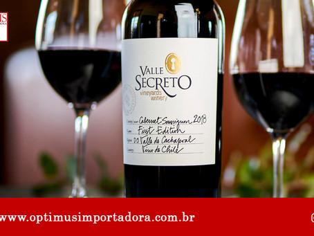 Conheça nossas dicas de harmonização para cada tipo de vinho!