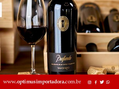 Saiba tudo sobre vinhos Chilenos: Temos os melhores vinhos para você!