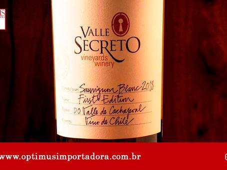 Conheça os vinhos mais famosos do mundo e como harmonizá-los!