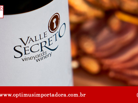 Quer saber mais sobre vinhos Chilenos? Aqui é o lugar certo!