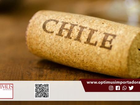 Quer saber mais sobre vinhos Chilenos? Aqui na Optimus é o lugar certo: