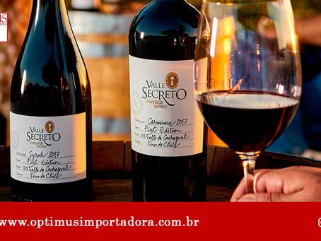 Um vinho especial para beber em companhia dos amigos! Conheça nossas dicas!