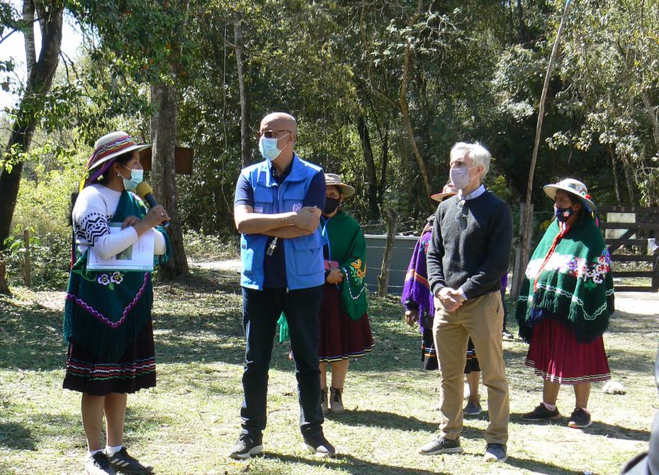"""ENCUENTRO: """"TERRITORIO DE VIDA: Sentir y cuidar nuestra biodiversidad"""" COMUNIDAD INDIGENA DEL PUEBLO KOLLA TINKUNAKU"""